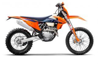 MOTORCYCLES KTM ENDURO MY22 378276_250EXC-FMY2290-Right