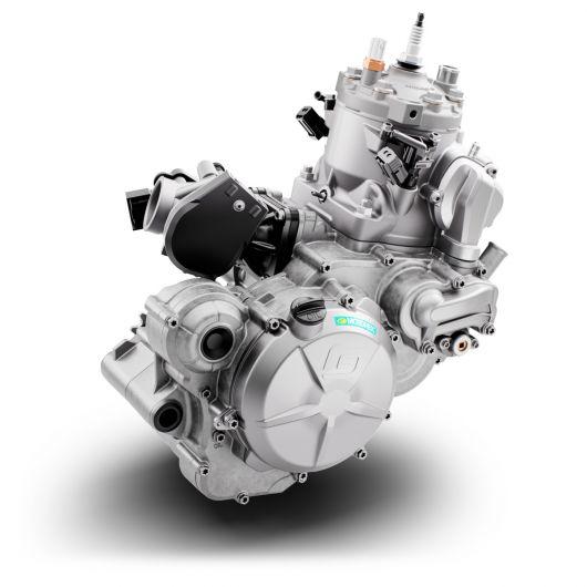 MOTORCYCLES GasGas MY21 ENDURO EC_300 3129_EC300_Engine_Right